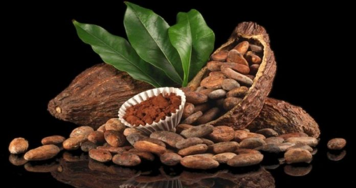 kakao-likoru-nedir-haram-midir