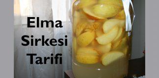elma_sirkesi_nasil_yapilir