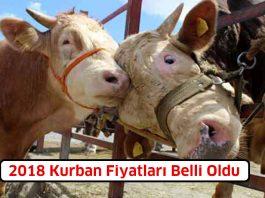 kurban_fiyatlari