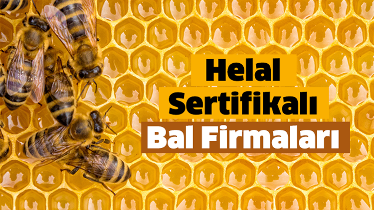 helal-sertifikali-bal