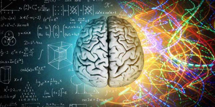 beyin ve sinir cerrahi hangi hastaliklara bakar