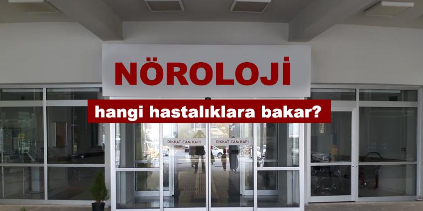 noroloji_hangi_hastaliklara_bakar