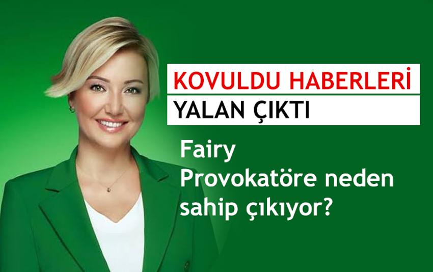 fairy_berna_lacin