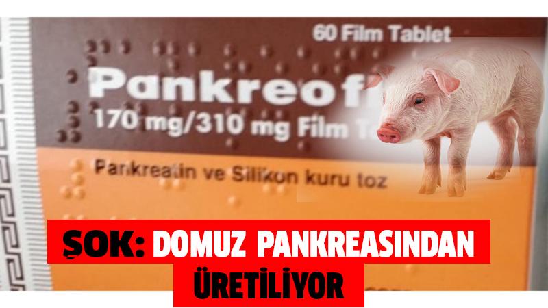domuz pankreası ilac
