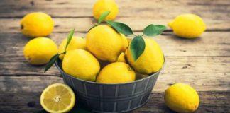 limon kalori
