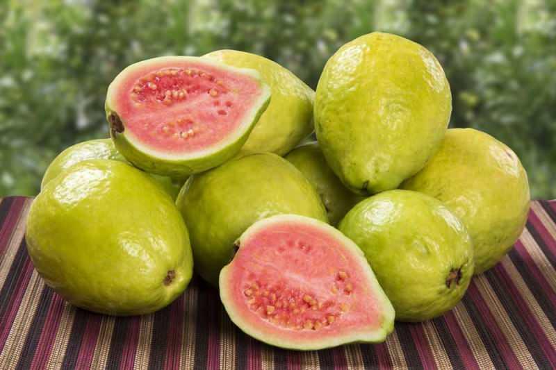 guava kalori